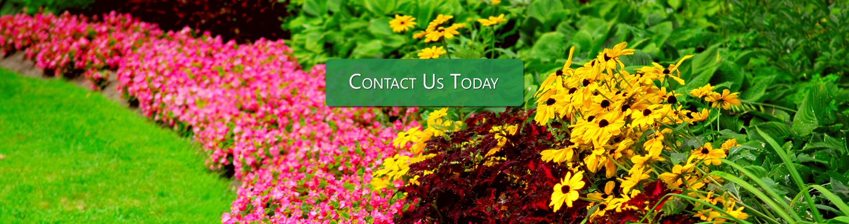 landscaping services greenfield indiana