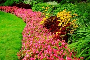 Flower Bed Care in Greenfield, IN - Commercial Landscaping