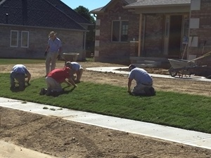 yard installation greenfield in